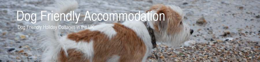 Dog Friendly Accommodation Cornwall Norfolk Lake District Dorset